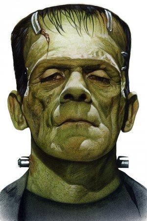Frankenstein's creation